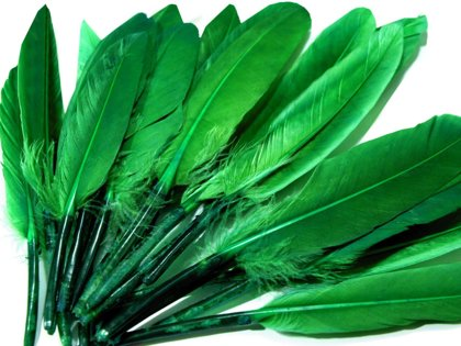 Spalvas Decorative duck feather length 9-14 cm