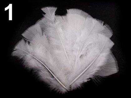 Spalvas Coloured Turkey Feathers length 11-17 cm