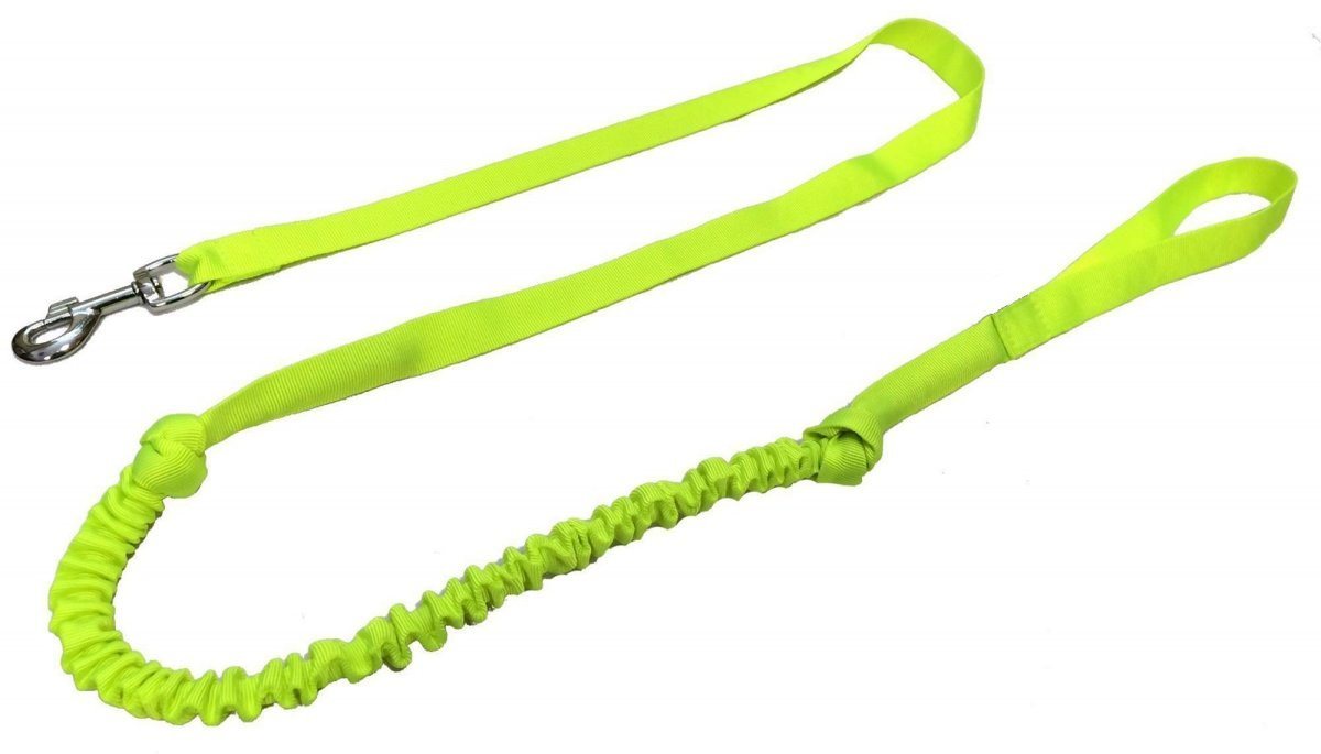 RACEDOG elastic leash for canicross 2m