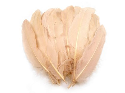 Spalvas Decorative Goose Feathers length 15-21 cm