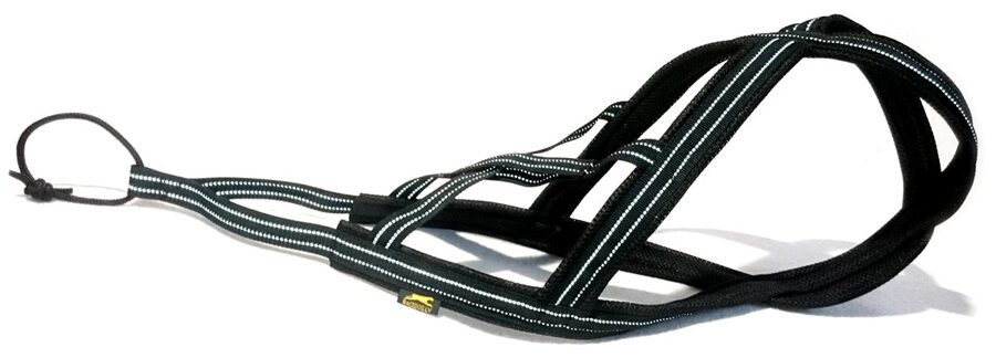 RACEDOG padded harness X-back REFLECTIVE